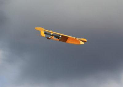 EU8T6603
